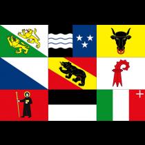 Flaggen Schweizer Kantone 20x30cm